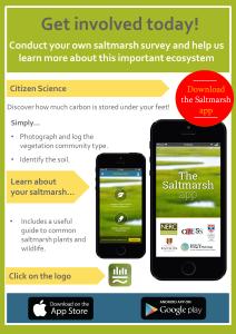 The Saltmarsh App